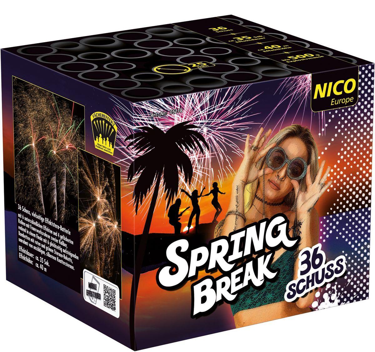 Spring Break Feuerwerksbatterie 36 Schuss,  für Silvester, Hochzeiten, Geburtstage uvm.