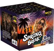 Spring Break Feuerwerksbatterie 35 Sek. von Nico